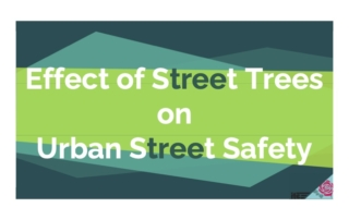 Streets and Trees Presentation Full 2021.07.12 cover